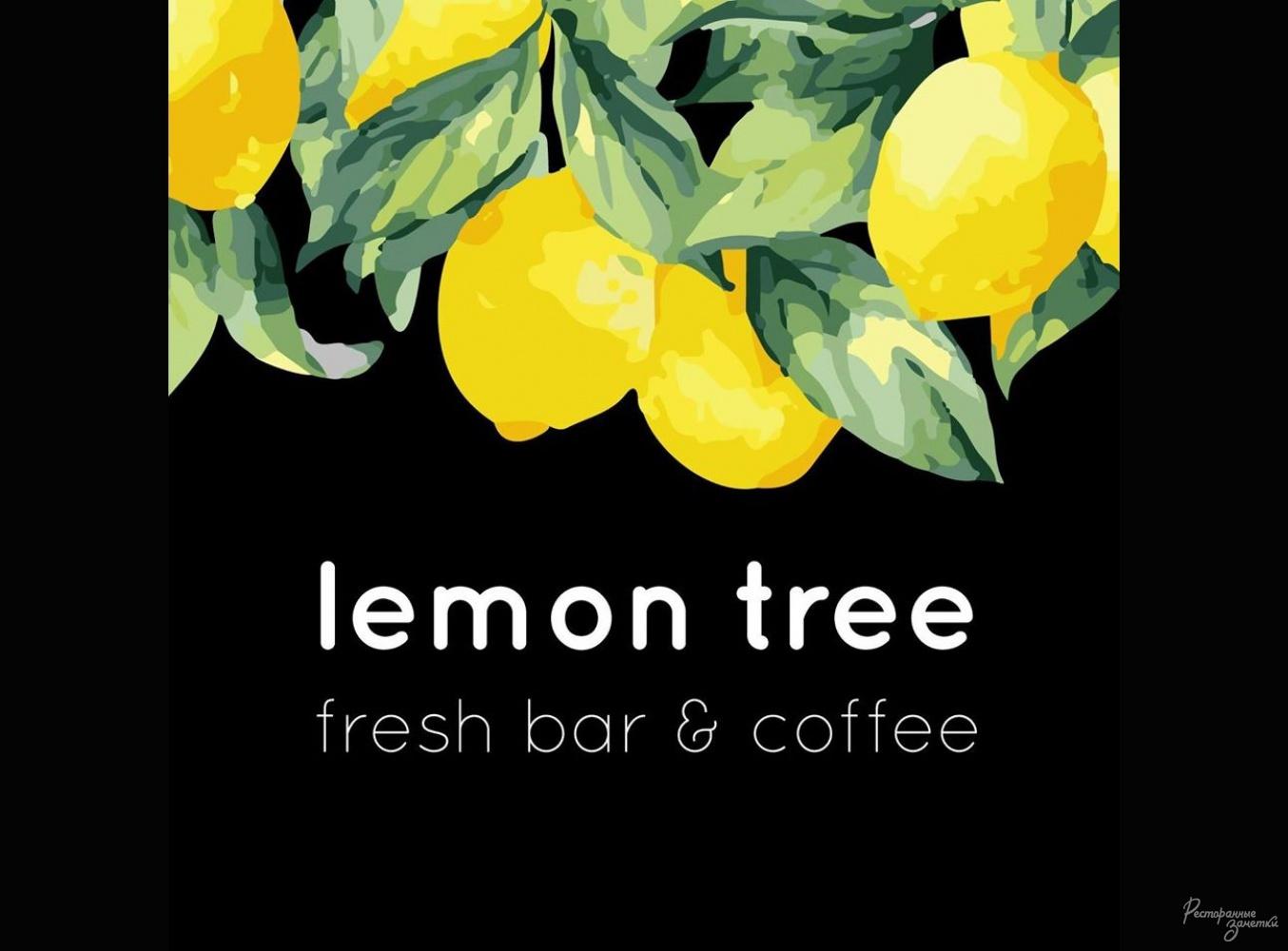 Кофейня lemon tree , Харьков